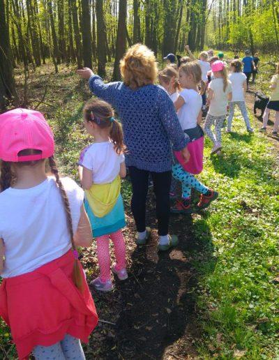 wycieczki dla szkół i przedszkoli